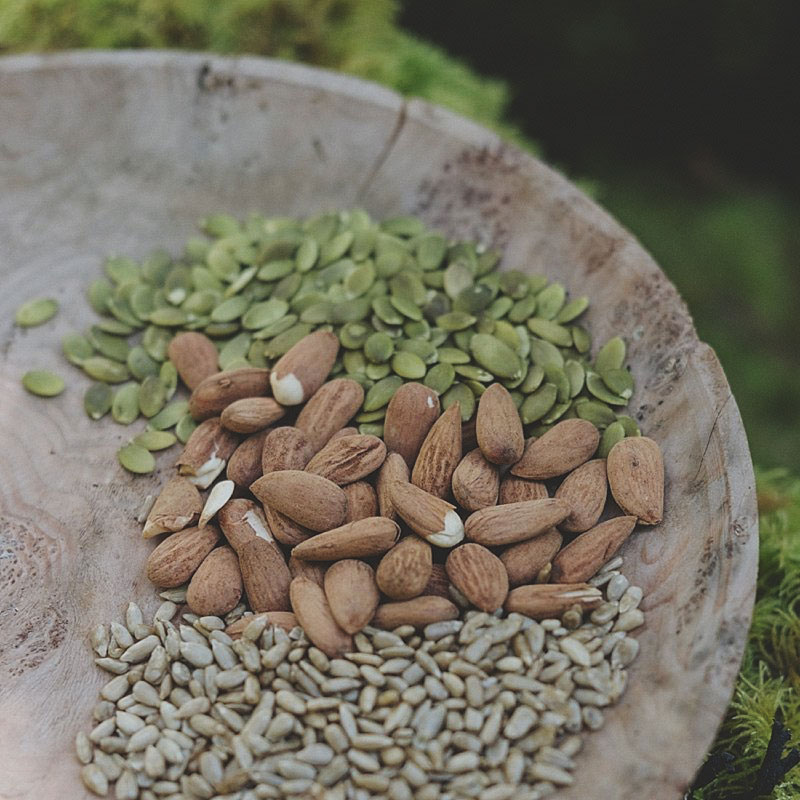 Sprouted Nuts and Seeds