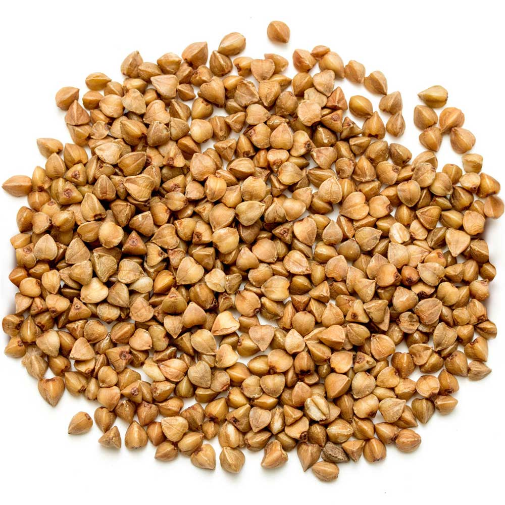 Sprouted Buckwheat Groats 8lb Home Grown Living Foods