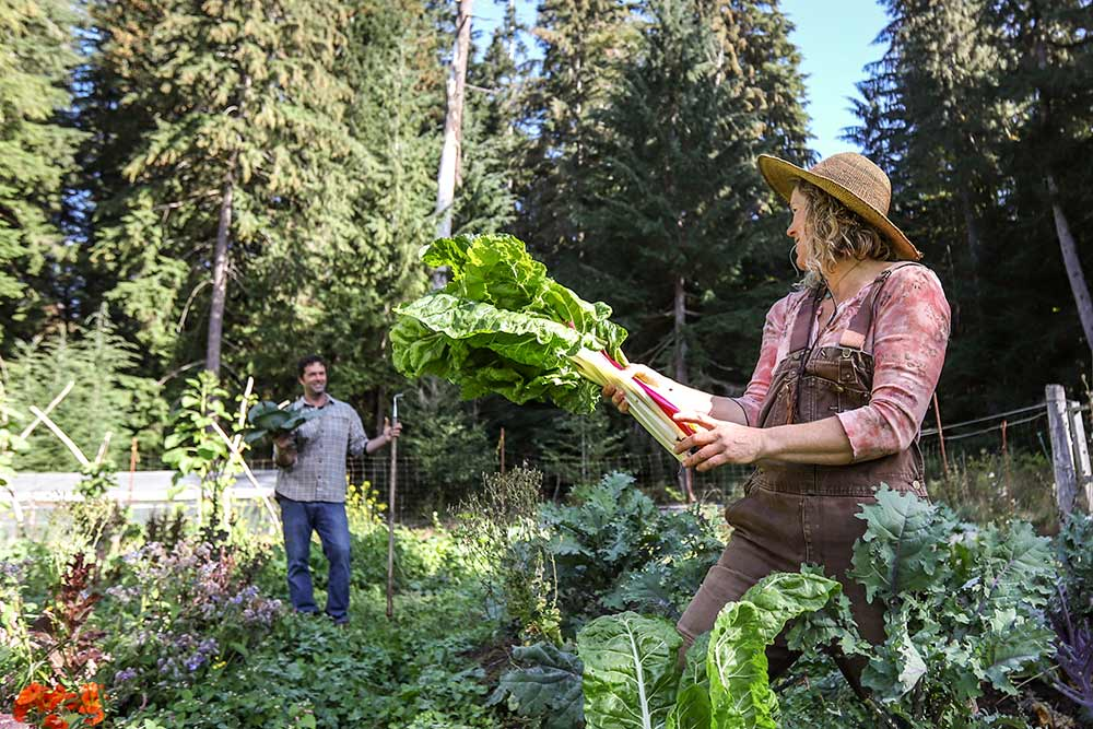 Home Grown Living Foods Farm